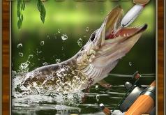 Игры Дневной улов