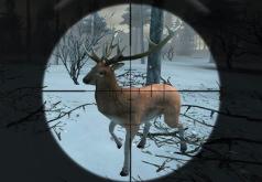 игры в лесу стреляют