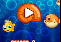 Игра Соедини Рыбок