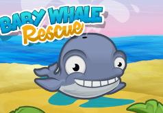 игра поймай кита