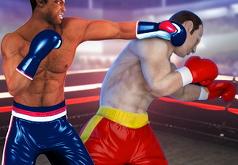 игры на двоих бокс красный против синего