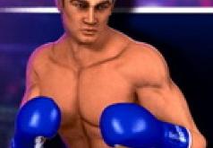 кот боксер игра