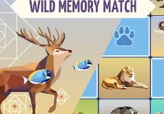Игра Меморина: дикие животные