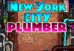 Игра Нью-йоркский водопроводчик