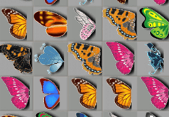игры логика бабочки